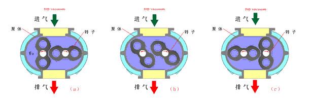传统罗茨泵结构图